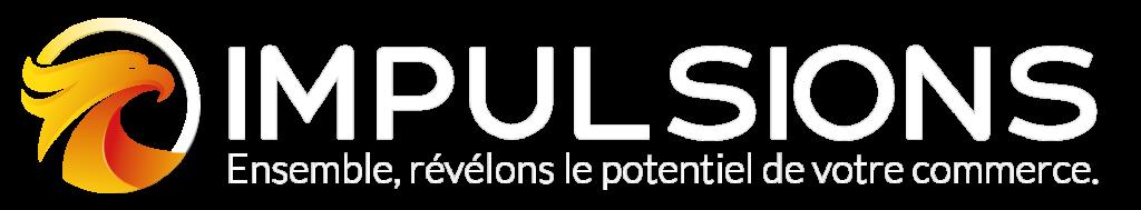 impulsions logo ecommerce formation strategie nc caledonie digital